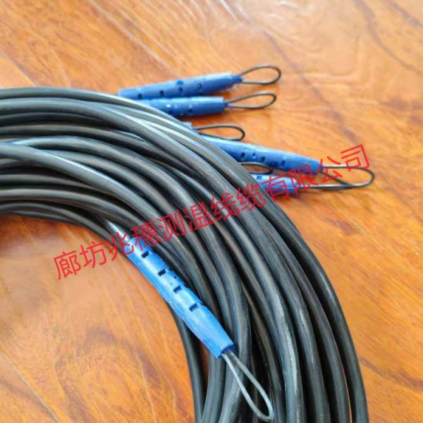 河北测温用电缆