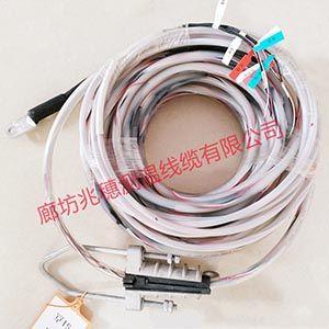 防水测温电缆